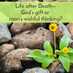 Life after Death, God's gift or man's wishful thinking?