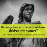 Angels and Humans and Genesis Q&A