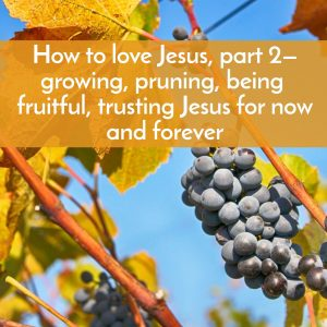 How to love Jesus, part 2